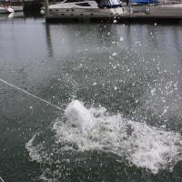 07 contenair à l'eau