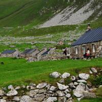 41 Village St Kilda