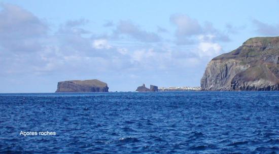 Açores roche 2004 228