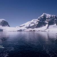 Antarctique Canal Neumaer