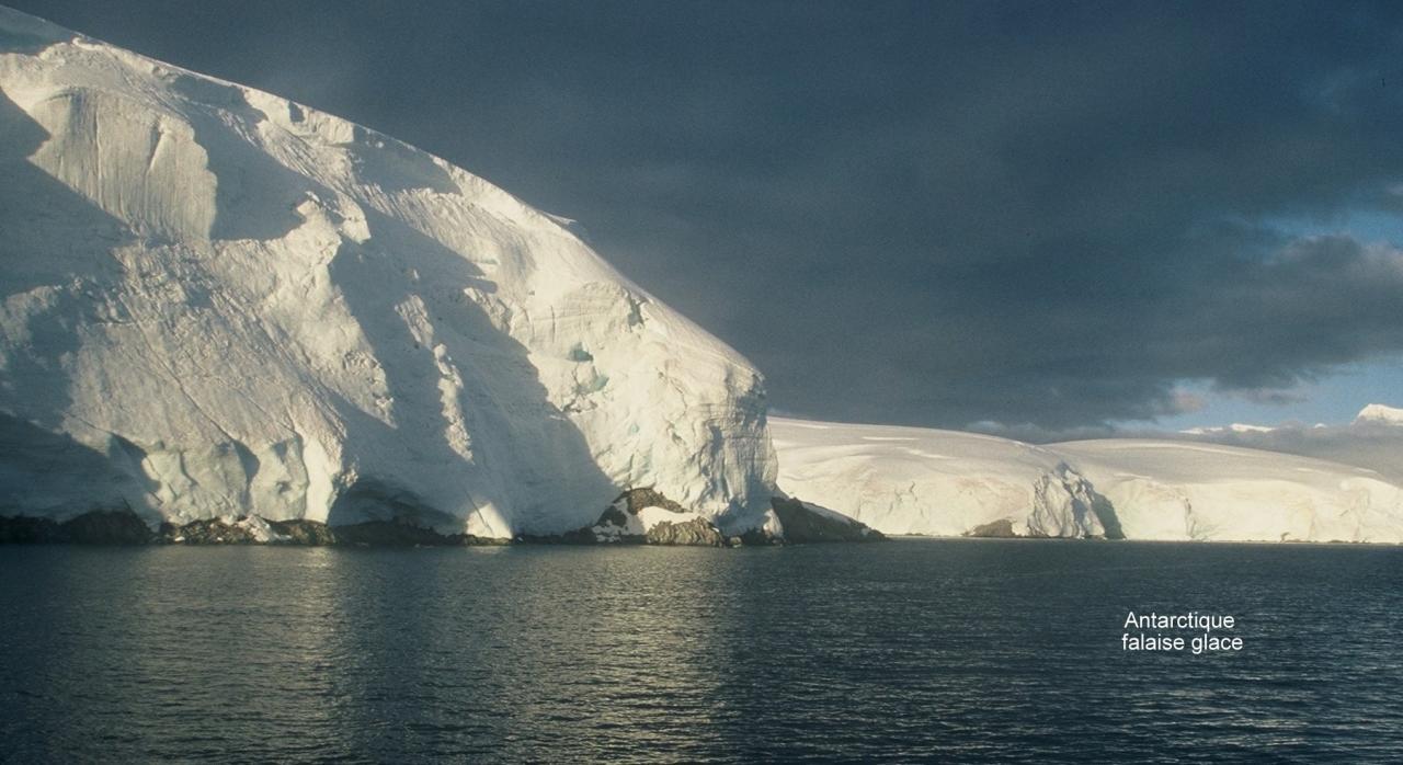 Antarctique falaises de glace