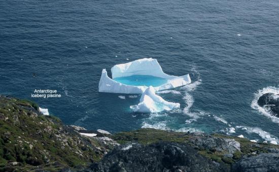 Antarctique iceberg piscine