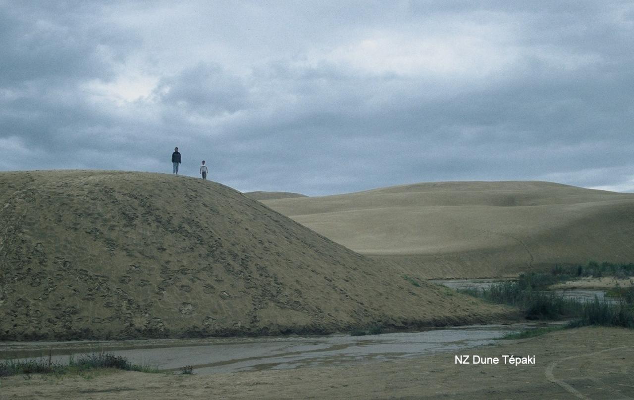 NZ Dune Tépaki