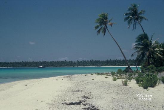 Polynésie Mopélia