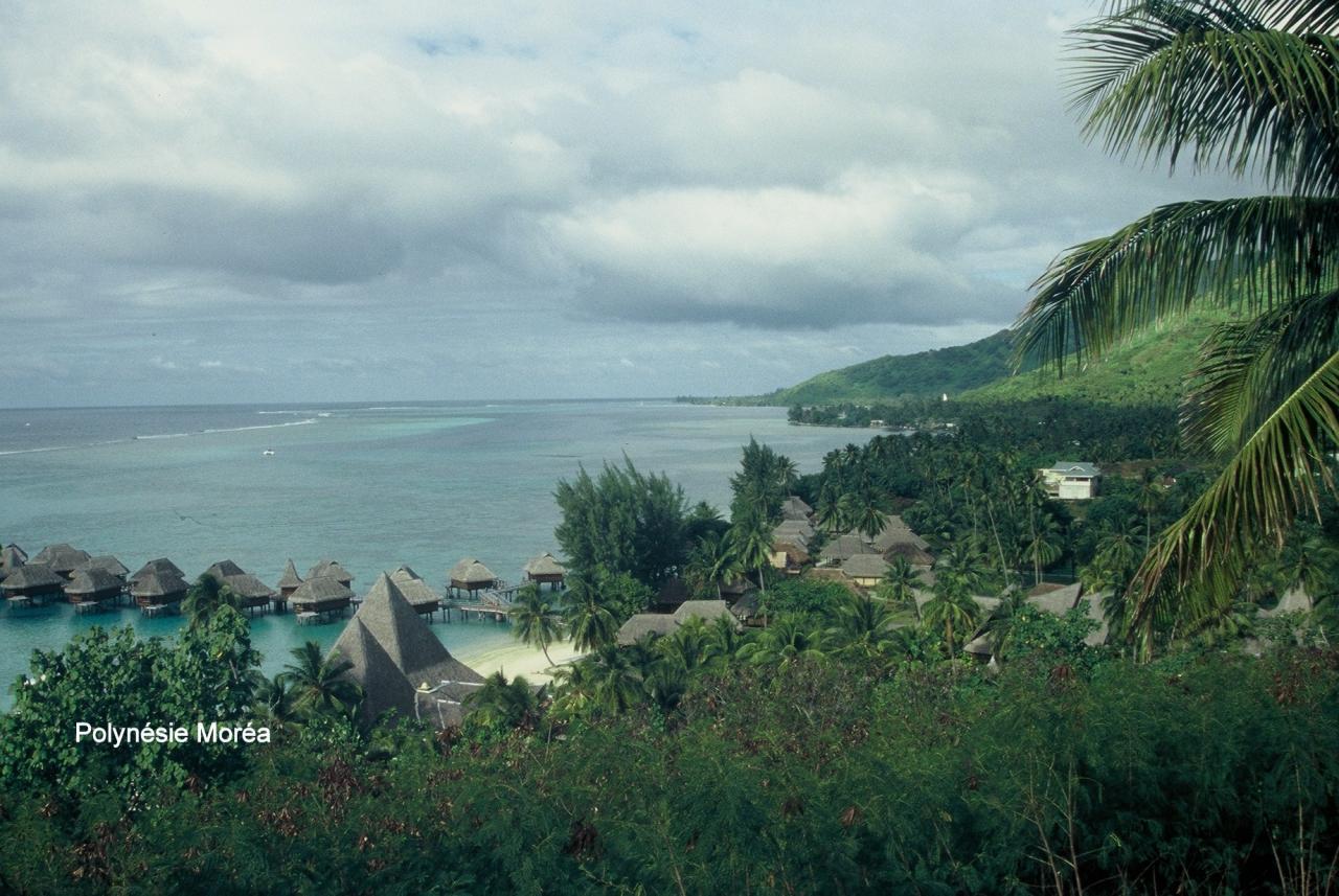 Polynésie Moréa