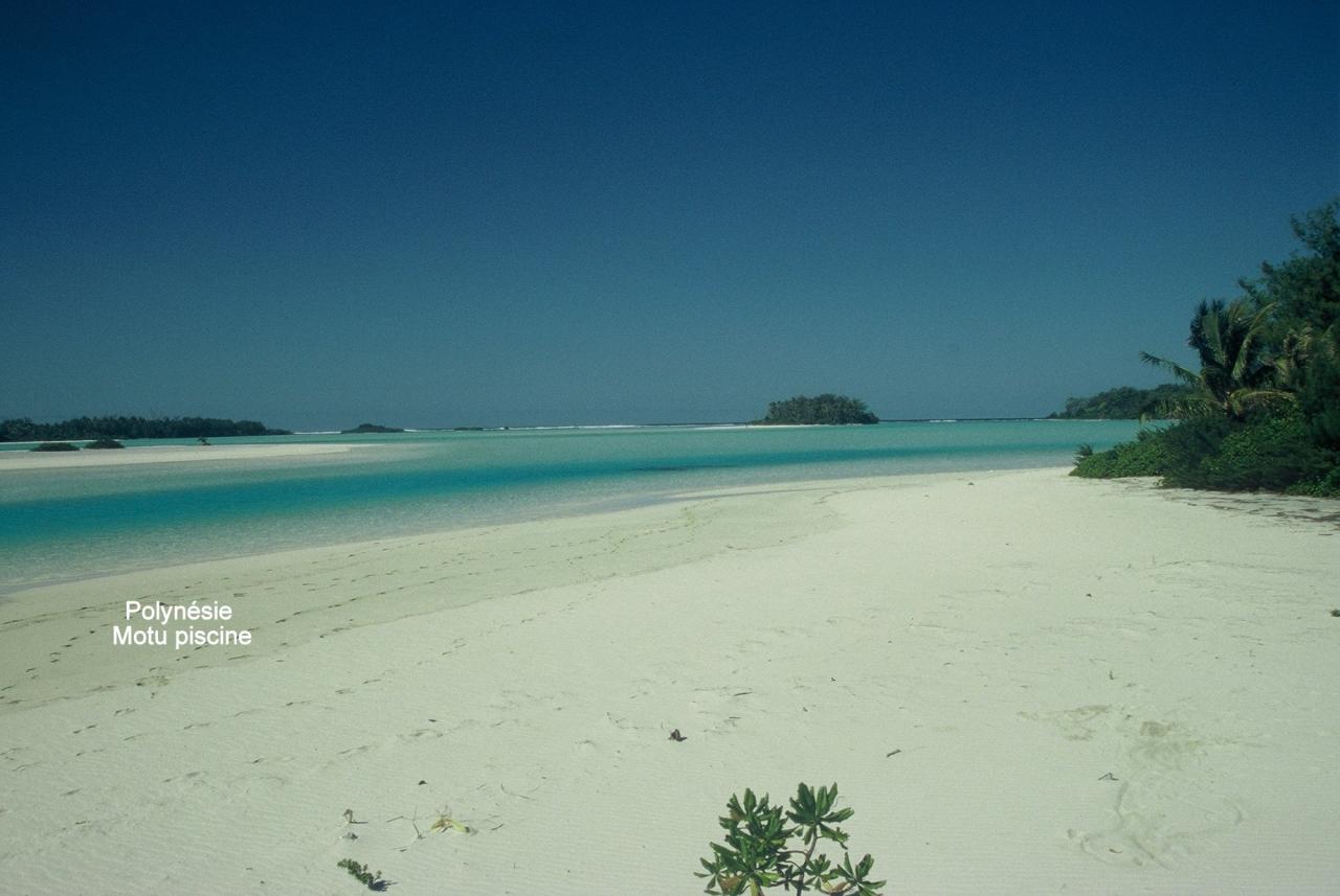 Polynésie Motu piscine