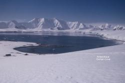antarctique-dorian-cove.jpg